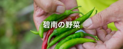 碧南の野菜